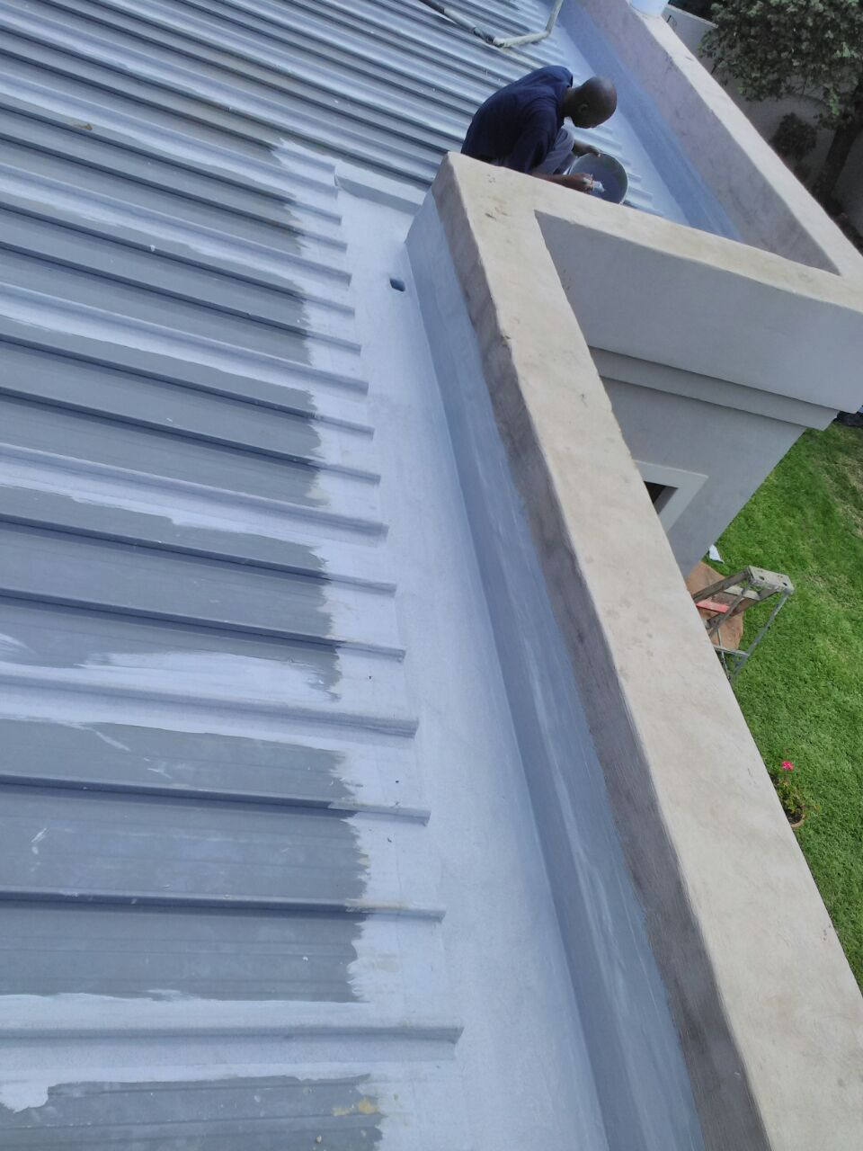 Services Waterproofing On All Leaking Roofs In The